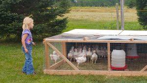 Simply Ducky Farm: Tiny People