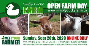 Open Farm Day 2020 at Simply Ducky Farm